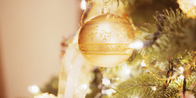 Best locations for your Christmas tree in December 2014